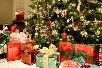 Vánoční stromek, zdroj: shutterstock.com